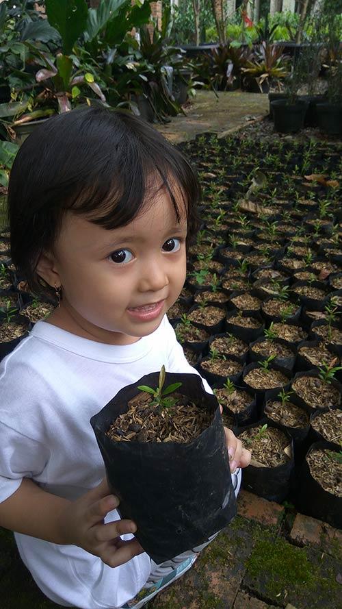 kuntum farmfield - Agrowisata di Bogor